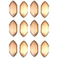 12 Kumo Aplliques by Kazuhide Takahama for Sirrah