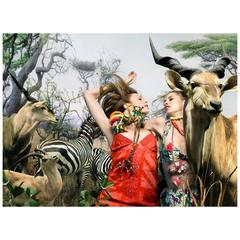 Nicola Majocchi Photograph Safari Fashion, 2001