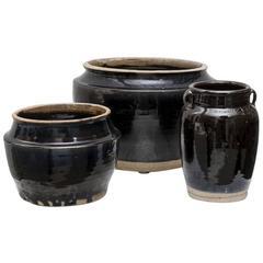 Black Jar H, Large