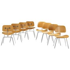 Set of Eight DCMs by Charles and Ray Eames for Herman Miller