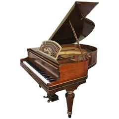 Art Case Pleyel Grand Piano Hand Painted Rosewood