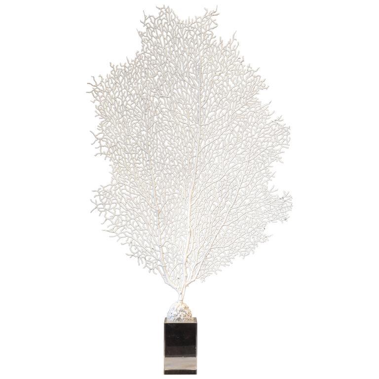 White Faux Coral