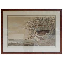 American Audubon Hand Colored Lithograph, Long Billed Curlew, Circa 1937