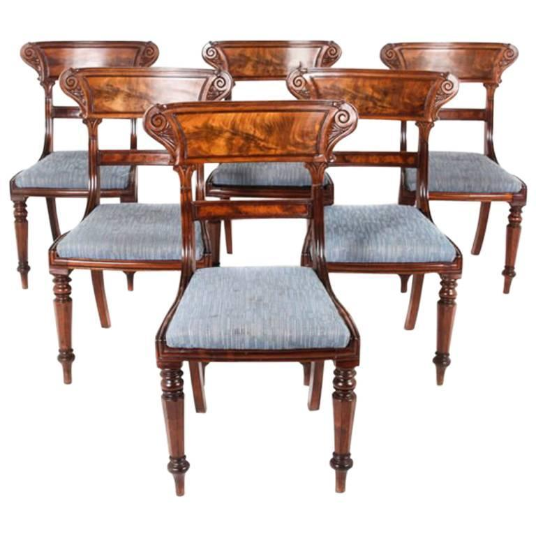 Antique English Mahogany William IV Dining Chairs Circa 1835 For Sale