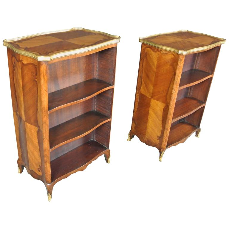 Fine Pair of 19th Century Bibliotheques For Sale