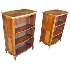 Fine Pair of 19th Century Bibliotheques