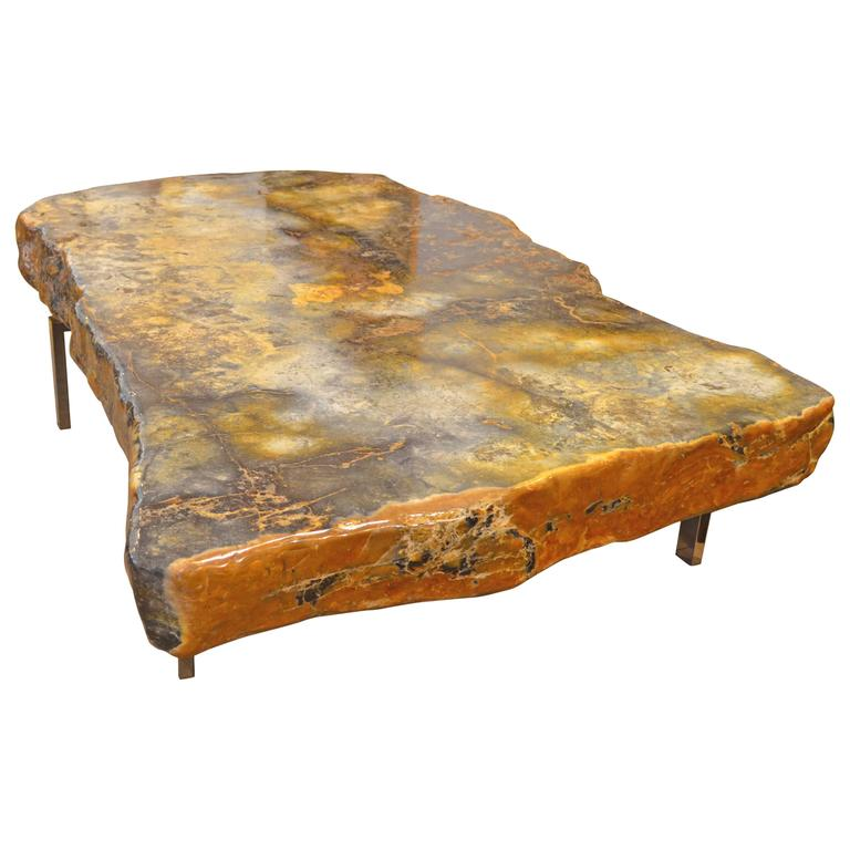 Andrianna Shamaris Single Slab Petrified Wood Coffee Table For Sale