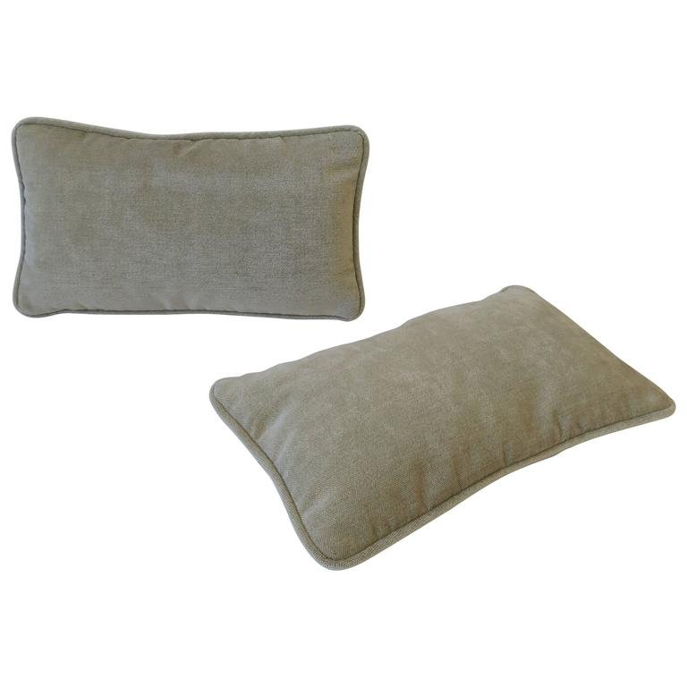 Pair of Small Throw or Accent Pillows in Champagne