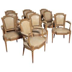 Set of Ten Louis XVI Style Beachwood Armchairs in the Manor of George Jacobq