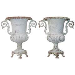 Pair of 19th Century English Jardinières
