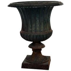 Cast Iron Campana Garden Urn, Late 19th Century