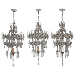 Classic Chandeliers French Chic Design, 1950s