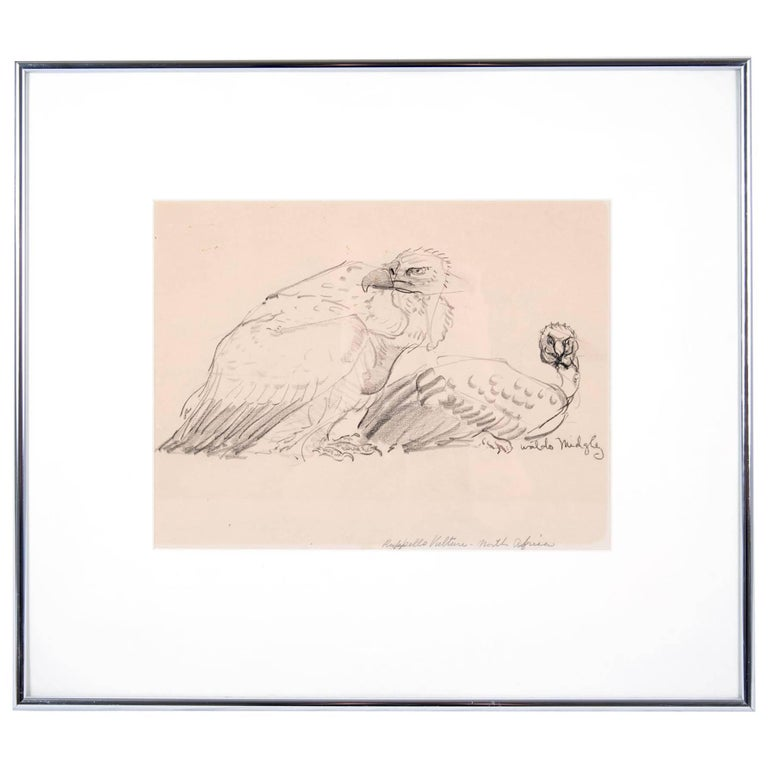 Two Vultures by Waldo Midgley, 1993 For Sale