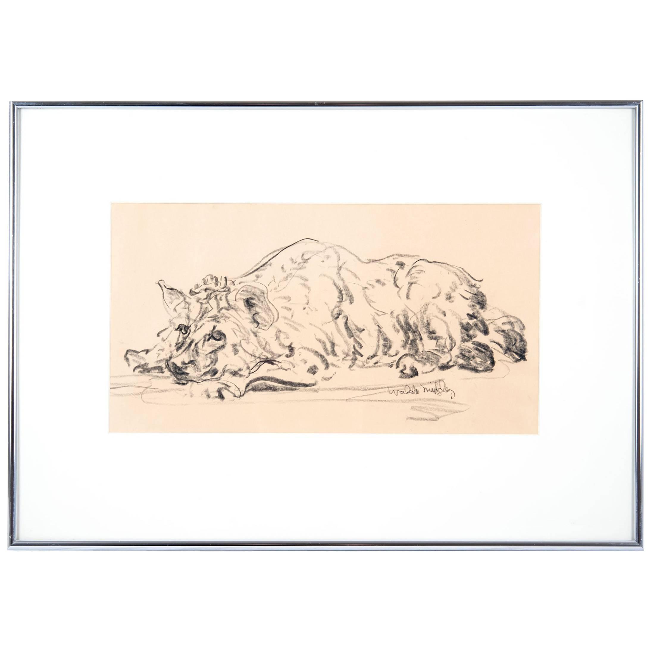 Hyena 1993 by Waldo Midgley