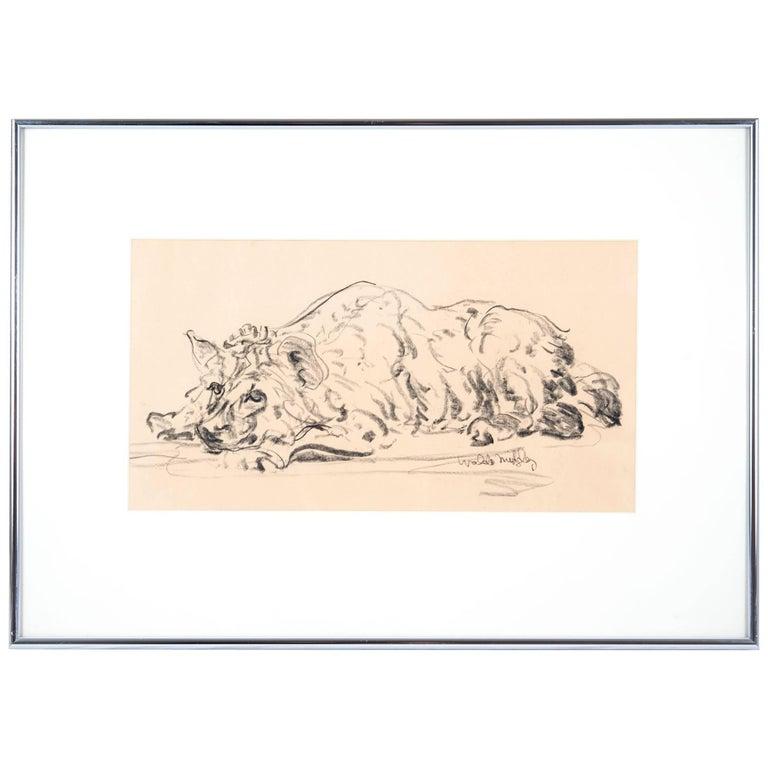 Hyena 1993 by Waldo Midgley For Sale