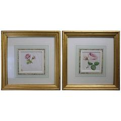 Pair of Antique Floral Watercolor Botany Studies, Pink Roses, One with Poem