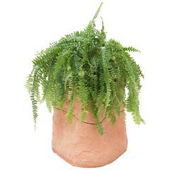 Chris Wolston Terracotta Planter Stand