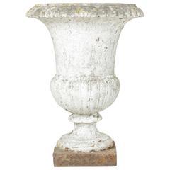 18th Century Cast Iron Classic French Versailles Urn, Planter, Jardinière