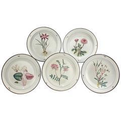 Set of 12 Davenport Pearlware Pottery Botanical Dessert Plates