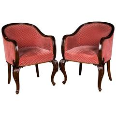 Early 20th Century, Two Beautiful Armchairs in Mahogany Wood