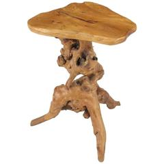 Organic Free-Form Cypress Root Side Table