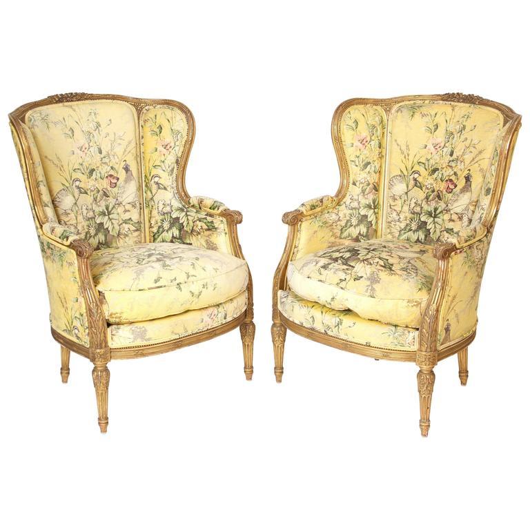 Pair of Louis XVI Style Bergeresd 1