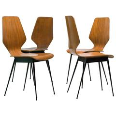 Elegant Italian Plywood Dining Chairs