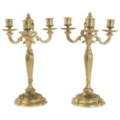 Pair of Candelabra in the Style of Louis XV in Gold Gilt Bronze, 19th Century