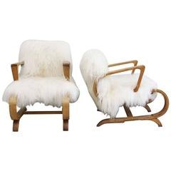 Pair of 1950s Cantilever French Armchairs Covered in Icelandic Sheepskin