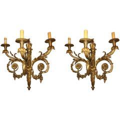 Pair of Monumental Three-Light Sconces Solid Bronze Louis XVI Style