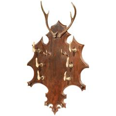 19th Century French Black Forest Carved Gun or Coat Rack with Antlers and Horns