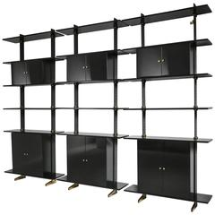 Large Ignazio Gardella Wall Mounted Storage System