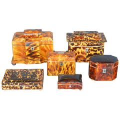 Collection of Six 19th Century Tortoise Shell Boxes