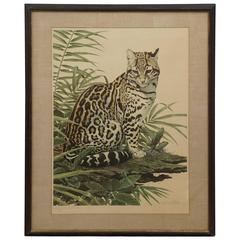 Axel Amuchastegui Print, Seated Leopard