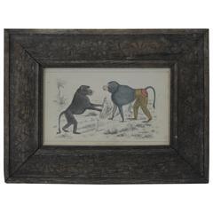 Original Antique Print of Monkeys/Baboons, 1847