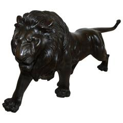 Late 19th Century Bronze Represent a Lion Japan