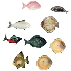 Set of Nine Mid-Century Modern Ceramic and Porcelain Fishes Wall Decoration