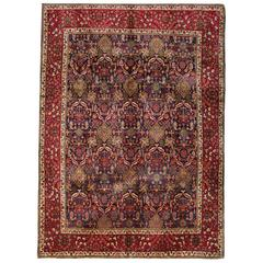 Magnificent Hand WovenrRugs, Persian Rugs from Tabriz