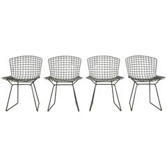 Bertoia Side Chairs for Knoll