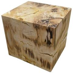 Andrianna Shamaris Petrified Wood Side Table with Cracked Resin
