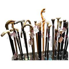 Collection of Walking Sticks and Canes
