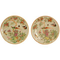 Pair of Mid-19th Century Chinese Celadon Canton Famille Rose Porcelain Plates