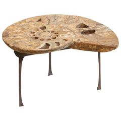 Coffee or Sofa Table a Fossil of Ammonite Standing on a Bronze Base