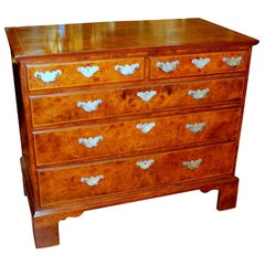 Antique English Inlaid Burr Walnut Queen Anne Revival Low Chest of Drawers