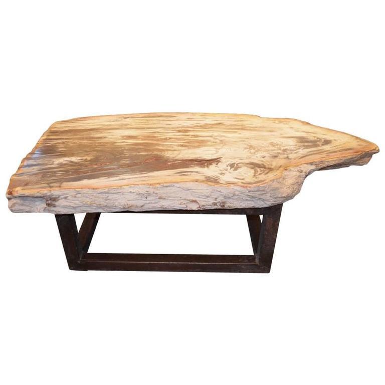 Antique Single Teak Slab Top Coffee Table At 1stdibs: Andrianna Shamaris Single Slab Petrified Wood Coffee Table