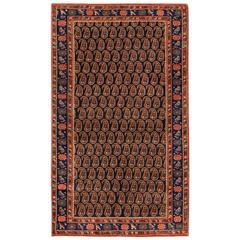 Beautifully Designed Modern Bidjar Rug