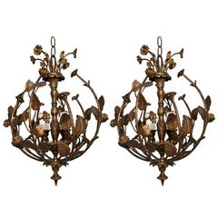 Elegant Pair of  Brass Flowers Lights