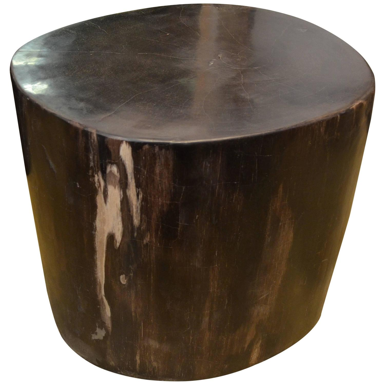 Andrianna Shamaris Super Smooth Black Petrified Wood Side Table