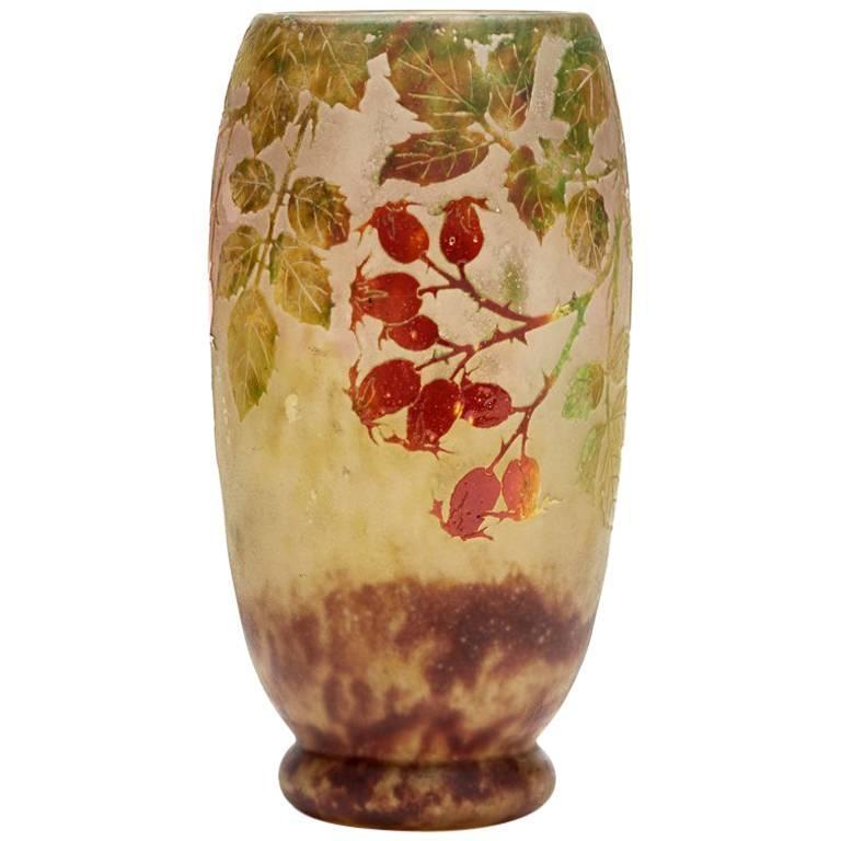 Daum Nancy Art Nouveau Rosehip Cameo Glass Vase, circa 1900 For Sale