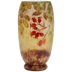 Daum Nancy Art Nouveau Rosehip Cameo Glass Vase, circa 1900